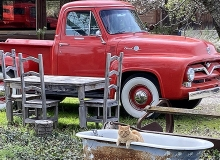 Red_Ford_and_Kitty